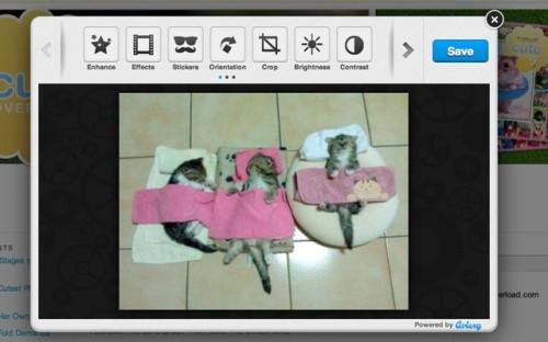 10_Aviary Screen Capture