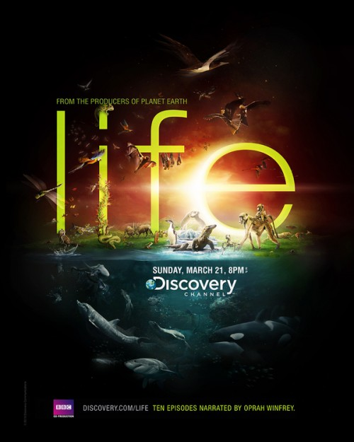 9_Discovery Channel - Life