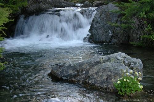 4_Mount Rainier Waterfall