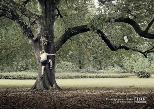 13_BOLD - Tree