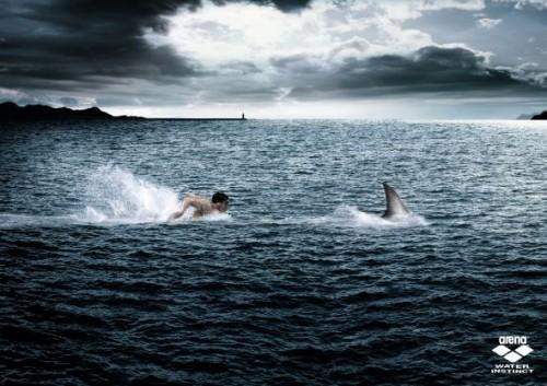 19_Arena Swimwear - Predator