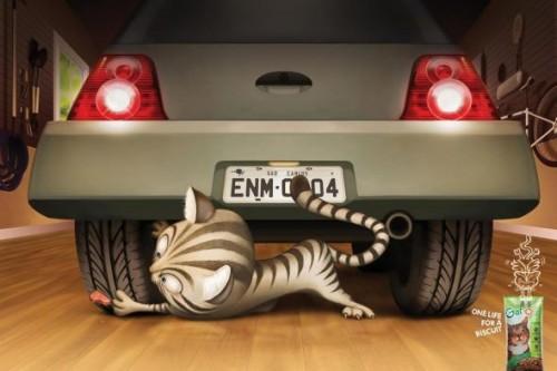 22_Gatos - Car