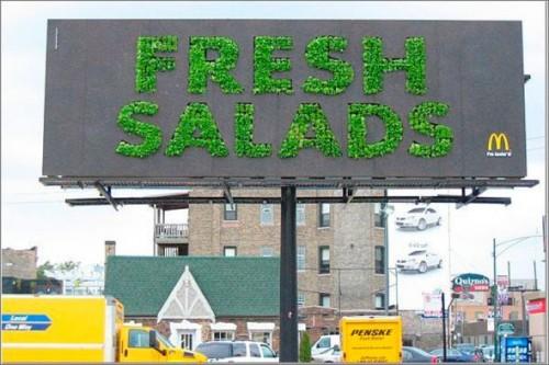 24_Fresh Salad