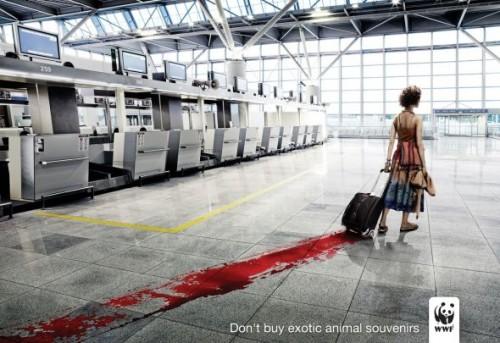 3_WWF - Blood