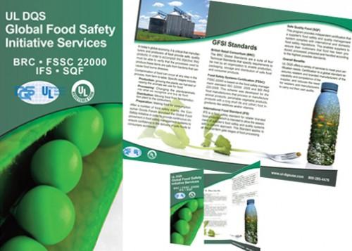 6_Tri-Fold Brochure
