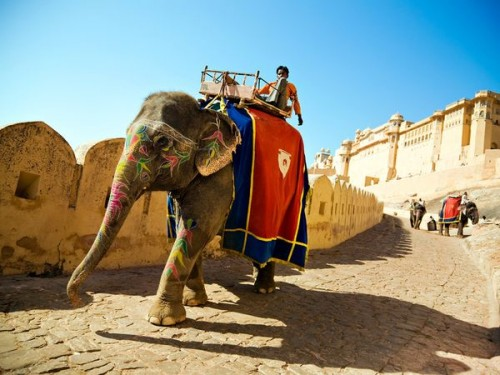 2_Amber Palace and Jaigarh Fort, Jaipur