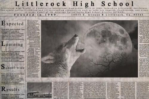 7_Newspaper