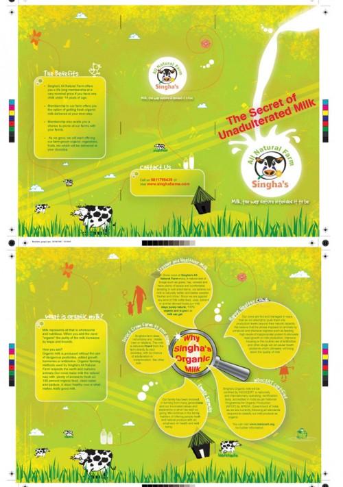 44_Brochure Design