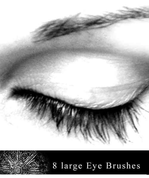 8 Large Eye Brushes