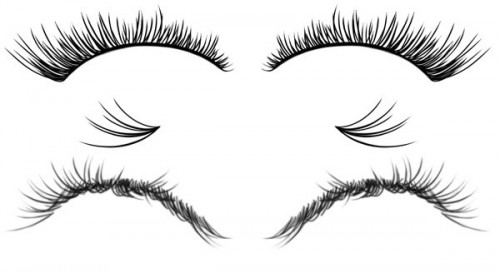 Free Eyelashes Brushes Set