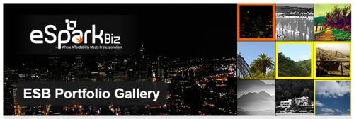 ESB Portfolio Gallery