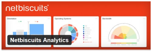 Netbiscuits Analytics