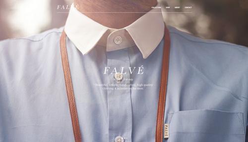 falve-single-picture-home-page-design