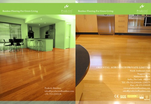 45_Bamboo Flooring Brochure Design
